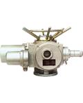DZW45-60型多回转阀门电动装置