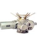 DZW90-120型多回转阀门电动装置